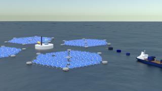 Floating Solar PLATFORM RENEWABLES